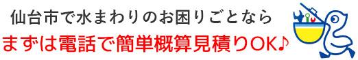 仙台市 トイレつまり・排水つまり・水漏れ修理なら